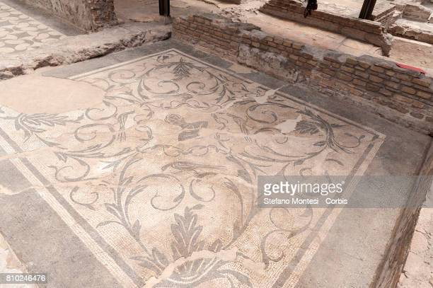 The new Domus Costantiniane where unpublished environments have been discovered near the residence of Helen mother of the emperor Costantino in the...