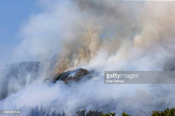 The new fire in Walters Bluff gets in to dry land in Nelson as forest fires continue to burn across the Tasman District on February 8 2019 in...