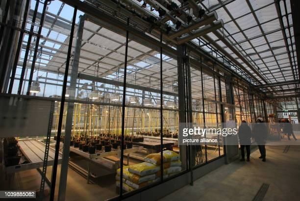 The new 'FischGlasHaus' operated by the Faculty for Agricultural and Environmental Sciences of Rostock University is presented to visiting...