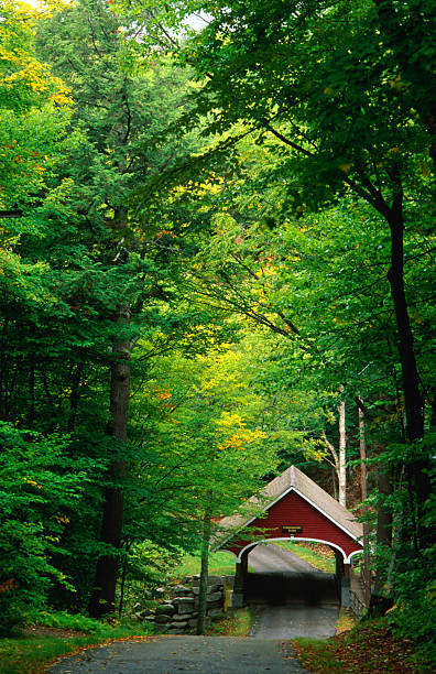 The New Hampshire Covered Bridge #39, also known as the Flume Bridge, built in 1871, Franconia Notch State Park, New Hampshire, United States of America, North America