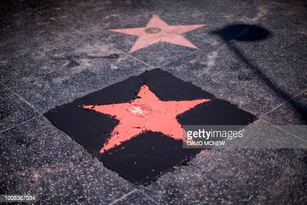 The new Hollywood Walk of Fame Star of US President Donald Trump nears completion after being destroyed by a vandal in the early morning hours on...