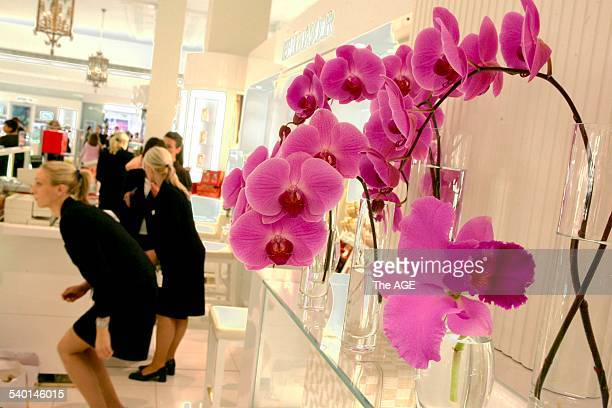 The new look ground floor decorated with flowers at David Jones in the Bourke Street Mall, Melbourne, decorated with flowers, 22 November 2006. THE...