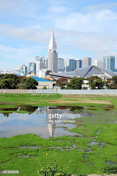 The new National Stadium construction site is covered with clover on November 16 2015 in Tokyo Japan The Japan Sport Council announced the...