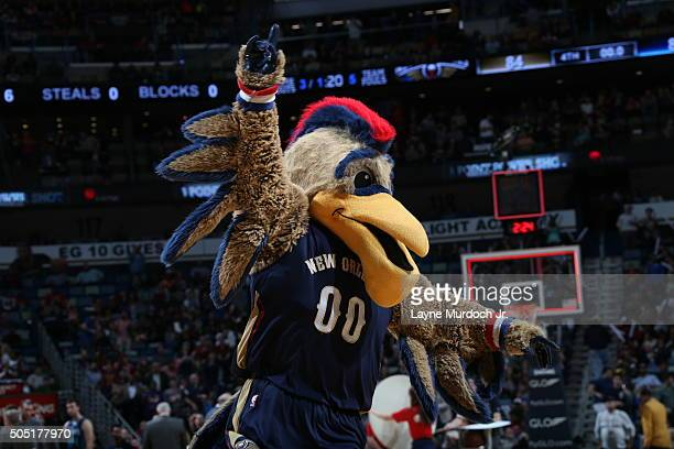 The New Orleans Pelicans mascot during the game against the Charlotte Hornets on January 15 2016 at Smoothie King Center in New Orleans Louisiana...