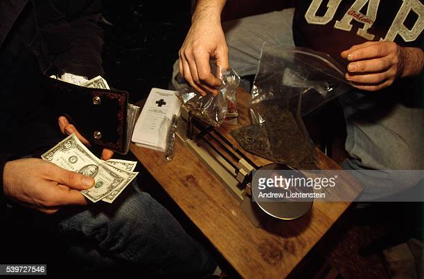 The New York City Medical Marijuana Buyers push for the legalisation of cannabis for medical purposes so to alleviate the suffering of the ill