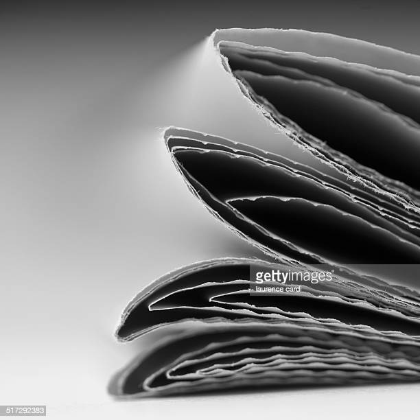 the news - cardi stock pictures, royalty-free photos & images