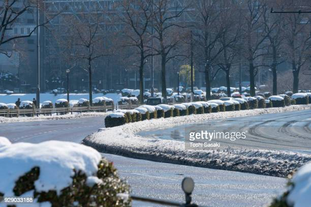 The next morning of winter snowstorm at Chiyoda-ku Tokyo Japan – January. 23 2018.  The wet thaw Uchibori Dori along the Imperial Palace Moat toward to Hibiya district.