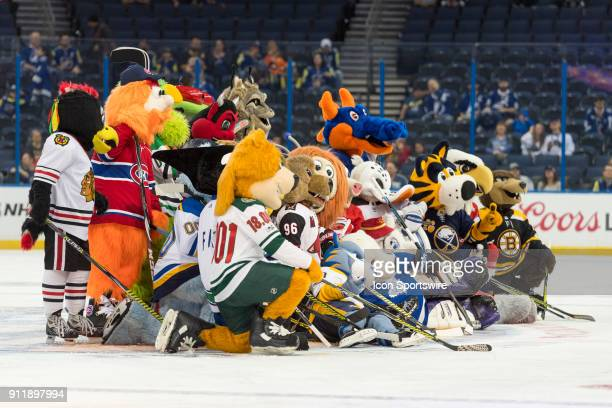 The NHL mascots pose for a picture after the mascot game prior to the NHL AllStar Game on January 28 at Amalie Arena in Tampa FL