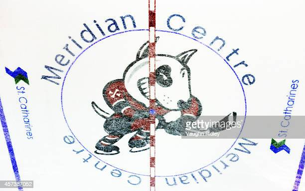 The Niagara Ice Dogs logo on the ice during an OHL game between the Belleville Bulls and the Niagara Ice Dogs at the Meridian Centre on October 16,...