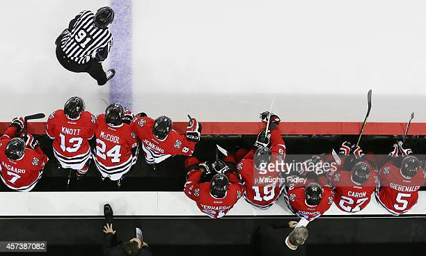 The Niagara Ice Dogs look on from the bench during an OHL game between the Belleville Bulls and the Niagara Ice Dogs at the Meridian Centre on...
