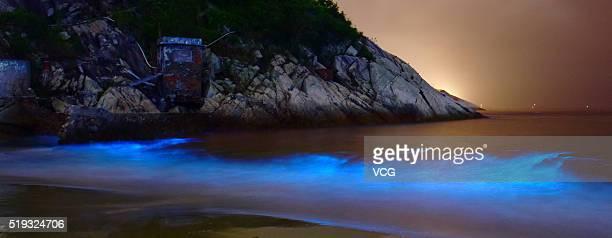The noctiluca scintillans glows at Dapeng bay on April 5 2016 in Shenzhen Guangdong Province of China The noctiluca scintillans could glow blue light...