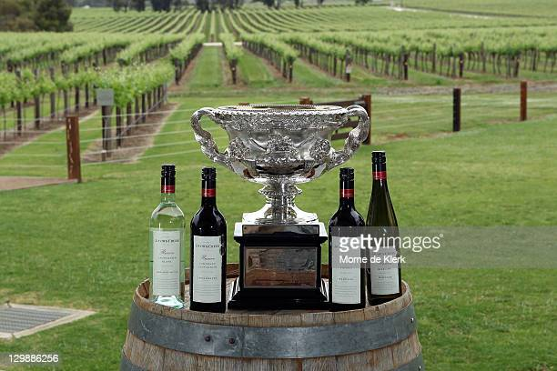 The Norman Brookes Challenge Cup at the Jacobs Creek visitor centre during the The Australian Open Trophies tour of the Barossa Valley at Rowland...