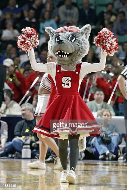 The North Carolina State wolfpack mascot cheers oncourt during the quarter final game of the ACC Tournament against Georgia Tech on March 14 2003 at...