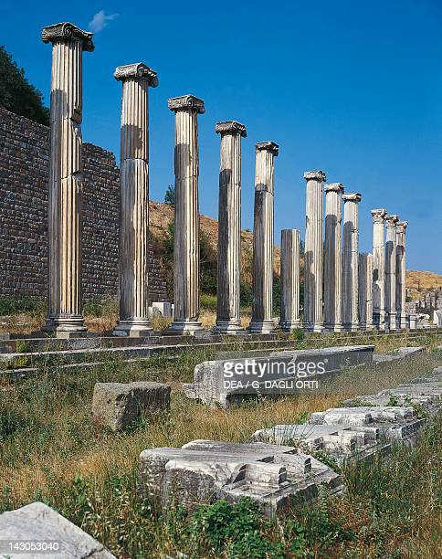 The north portico and Ionic columns of the ancient city of Pergamon, Turkey. Greek civilisation, 2nd Century BC.