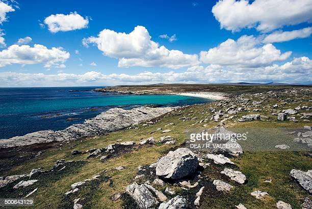 The northeast coast of Pebble Island, Falkland Islands, British Overseas Territory, United Kingdom.