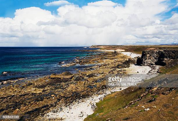 The northeast coast of Pebble Island Falkland Islands British Overseas Territory United Kingdom