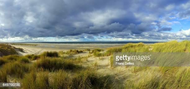 the northern coast of vlieland, wadden islands, the netherlands - friesland noord holland stockfoto's en -beelden