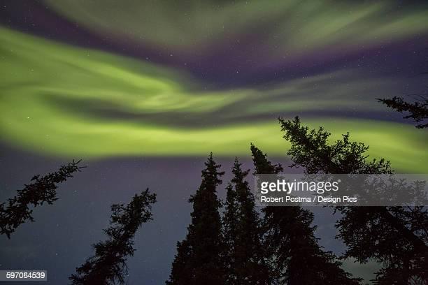 The northern lights (aurora borealis) dance in the skies above Yukon Territory