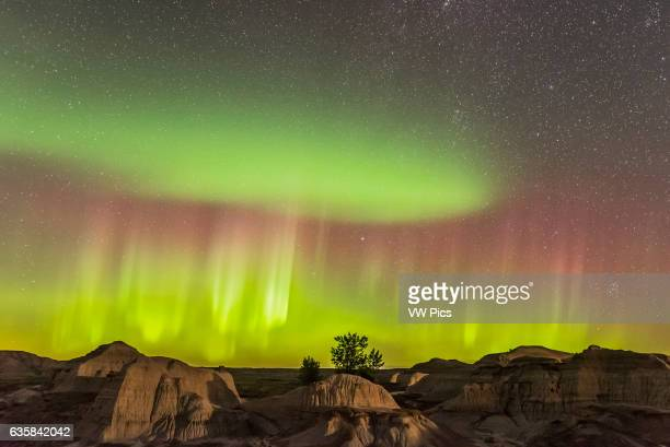 The Northern Lights over the badlands of Dinosaur Provincial Park Alberta on September 11 2015 This is one frame from a 280frame timelapse sequence...