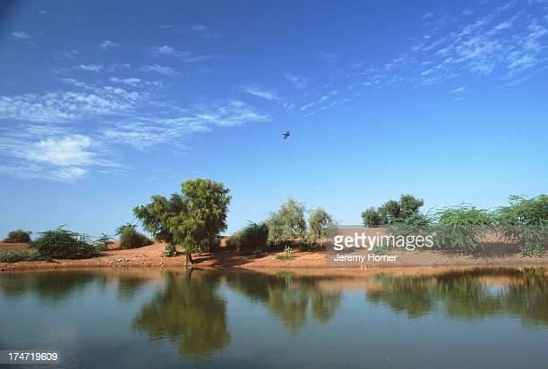 The oasis of Lourdia near Jodhpur Rajasthan