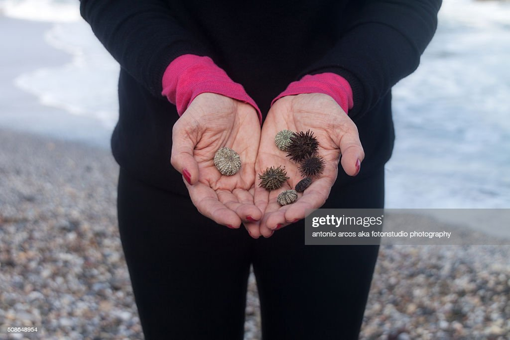 The offering : Stock Photo