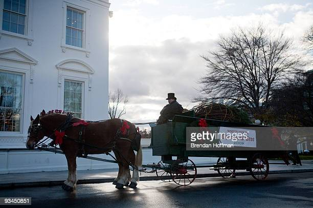 The official White House Christmas Tree arrives at the North Portico of the White House on November 27 2009 in Washington DC The 18 and a half foot...