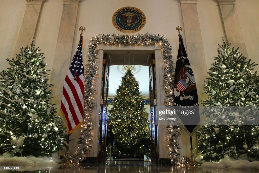 The official White House Christmas tree stands in the Blue Room at the White House during a press preview of the 2017 holiday decorations November 27, 2017 in Washington, DC. The theme of the White House holiday decorations this year is 'Time-Honored Traditions.'