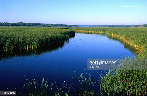 the ogechie lake, mille lacs lake - minnesota stock pictures, royalty-free photos & images