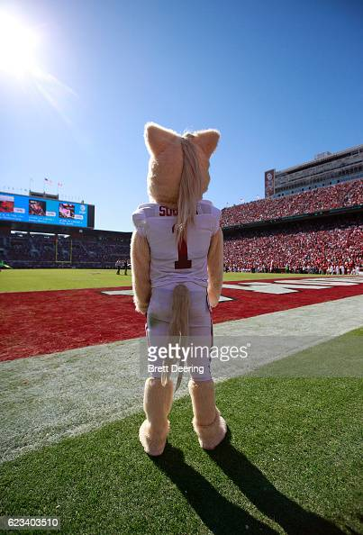 The Oklahoma Sooners mascot Sooner watches the game ...