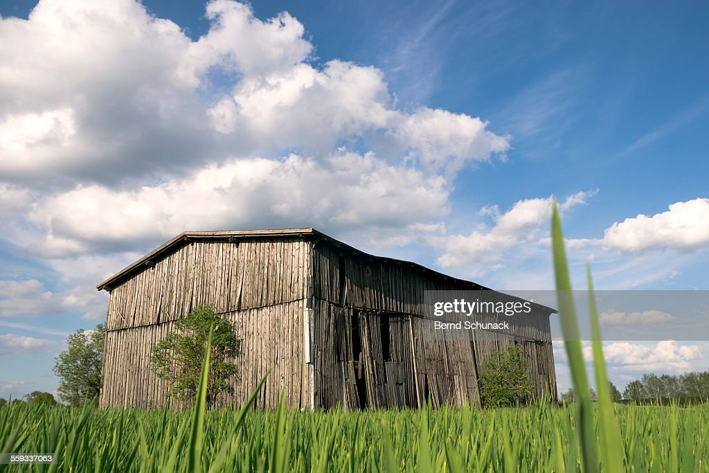 The Old Barn : Stock-Foto