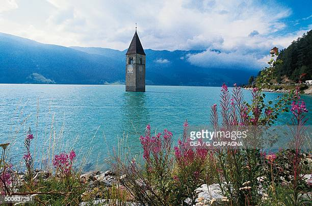 The old bell tower of Curon Venosta church rising out of the waters of the artificial lake of Resia TrentinoAlto Adige Italy