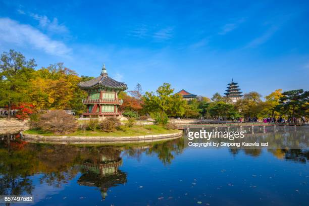 the old palace tower near the pool with its reflection inside the gyeongbokgung palace, south korea. - gyeongbokgung palace 個照片及圖片檔