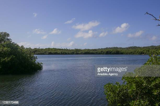 The Old Point Mangle Regional Park is a wildlife sanctuary located on the eastern side of the island a mangrove system in which live mussels, crabs,...