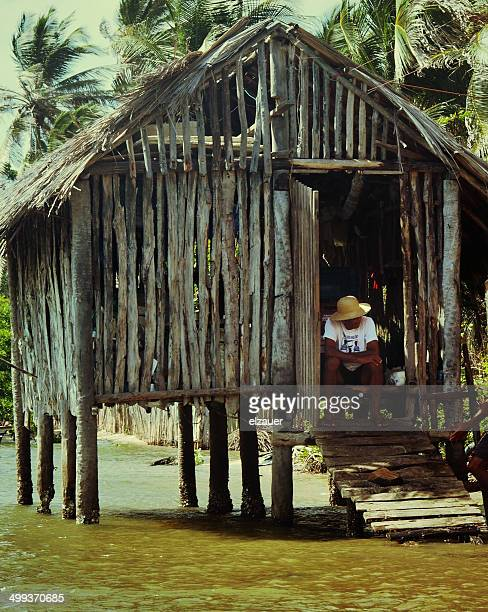 the old river - barreirinhas stock pictures, royalty-free photos & images