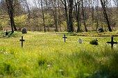 The old Tvis monastery graveyard
