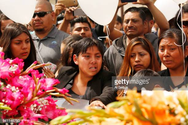 The oldest child center of six siblings and family mourn during the funeral services at Our Lady of Guadalupe Church in Delano for Santos Hilario...