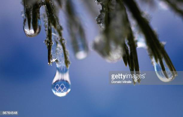 The Olympic Rings are reflected in waterdroplets melting off a tree branch prior to the Turin 2006 Winter Olympic Games on February 7 2006 in...