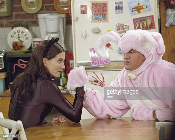 FRIENDS 'The One with the Halloween Party' Epsiode 6 Aired 11/1/2001 Pictured Courteney Cox as Monica GellerBing as 'Catwoman' Matthew Perry as...