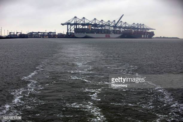 The OOCL Scandinavia container ship operated by Orient Overseas International Ltd left and the Mediterranean Shipping Co Anna container ship stand at...
