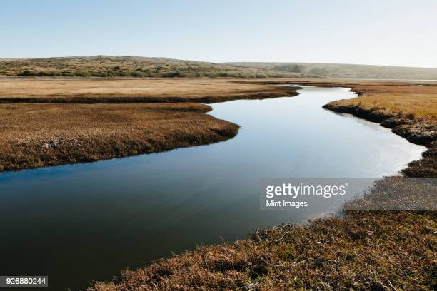 the open spaces of marshland and water channels. flat calm water. - estuary stock pictures, royalty-free photos & images