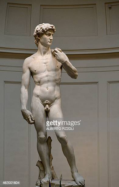 The original 16th century statue of David by Italian artist Michelangelo Buonarroti stands in the Galleria dell'Accademia in central Florence on...
