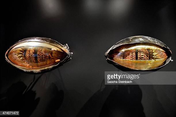 The original Jabba the Hutt's eyeballs and eyelids are seen during the 'Star Wars Identities' Exhibtion Press Preview VIP Opening at Odysseum on May...