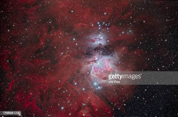 The Orion Nebula, aka Messier 42, at centre, with the blue Running Man Nebula above it. The smaller nebula attached to the top edge of M42 is M43....