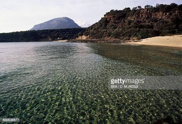 The Osalla cove Marina di Orosei National park of Gennargentu and of the Orosei Gulf Sardinia Italy