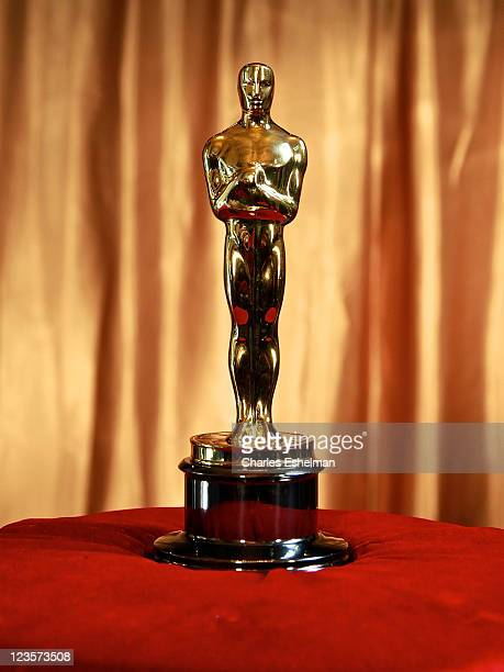 The Oscar trophy at the 83rd Annual Academy Awards Meet The Oscars New York at Grand Central Terminal on February 23 2011 in New York City