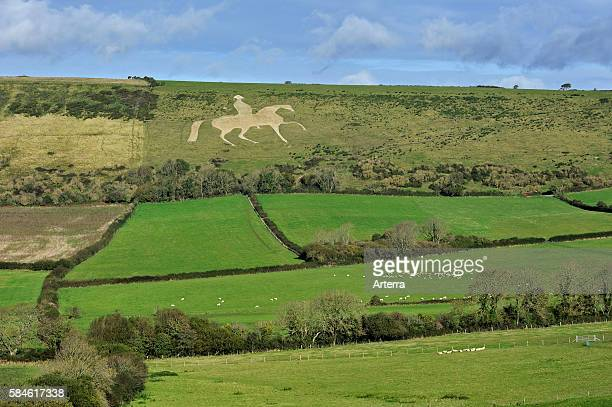 The Osmington White Horse, hill figure of George III on horseback sculpted in 1808 into the limestone Osmington hill along the Jurassic Coast,...