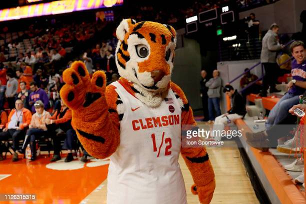 The other Clemson mascot 'Cub' during a college basketball game between the Florida State Seminoles and the Clemson Tigers on February 19 at...
