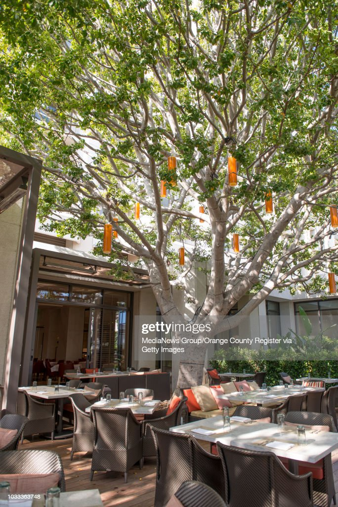 The Outdoor Patio At Oak Grill Located In Island Hotel Newport Beach