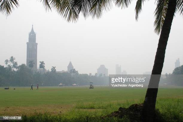 the oval maidan recreational space, peaceful atmosphere, mumbai, india - argenberg stock-fotos und bilder