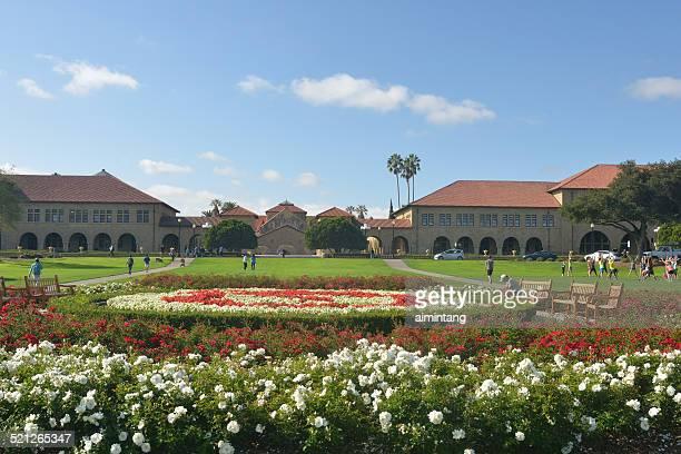 oval park de la universidad de stanford - stanford california fotografías e imágenes de stock
